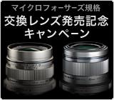 bn_c110630b.jpg